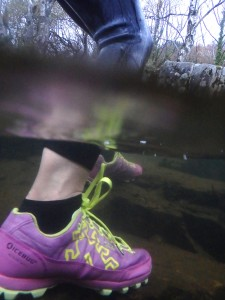 Icebug swimrun shoes